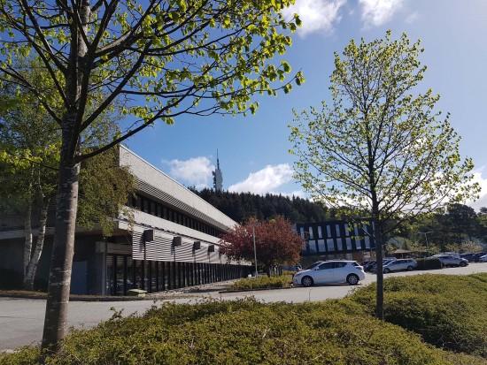 Bygning , trær og parkeringsplass