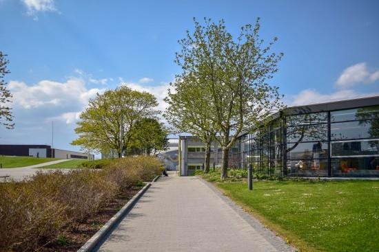 Gangvei mot biblioteket med grønn plen og bå himmel