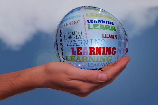 Hand globe education