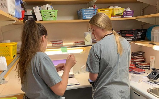 sykepleiestudenter på medisinrom