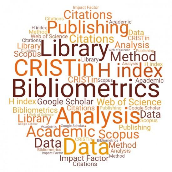 Bibliometrics from the University Library