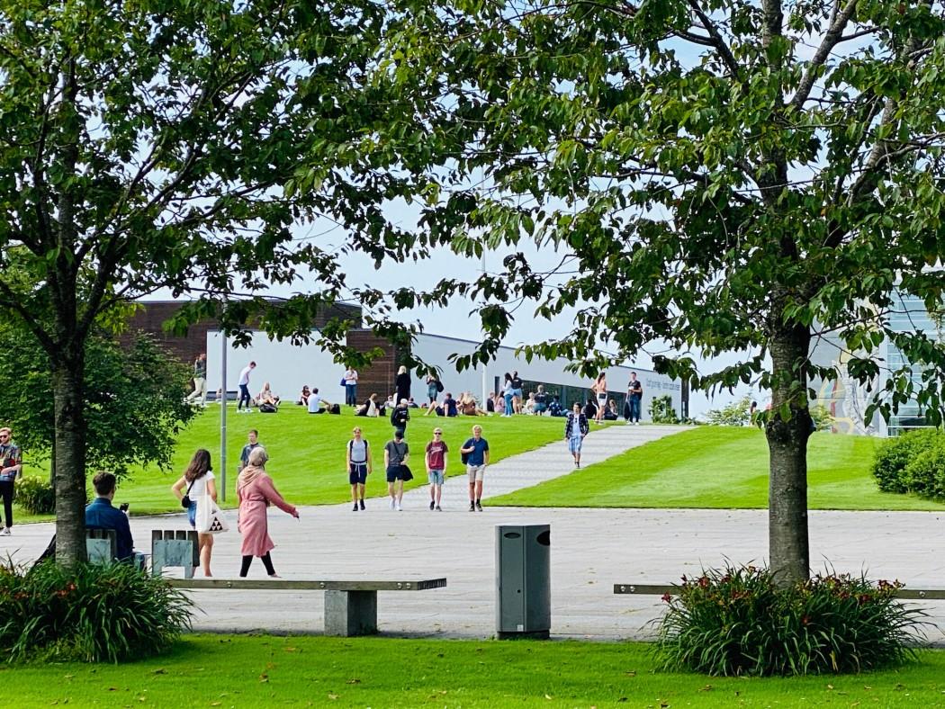 Campus Ullandhaug ved campusdraget og grøne plenar